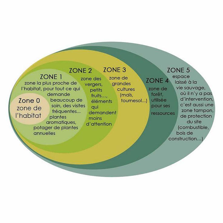 zone design permaculture - Légumes vivaces en maraîchage bio : une approche permaculturelle