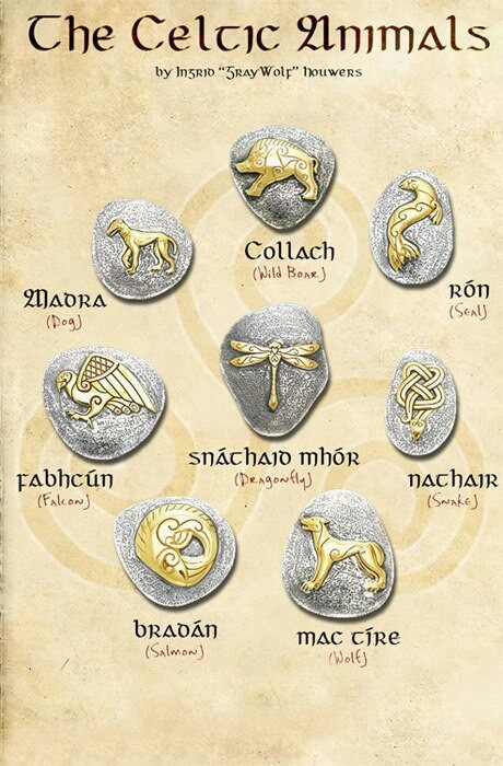 The Celtic animals