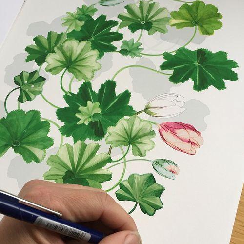 Artprints from Anna Handell  http://prints.se/products/anna-handell