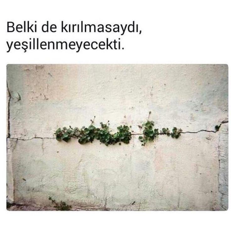 """4,140 Beğenme, 14 Yorum - Instagram'da Söz Sokakta #sözsokakta (@sozsokakta): """"#sözsokakta"""""""