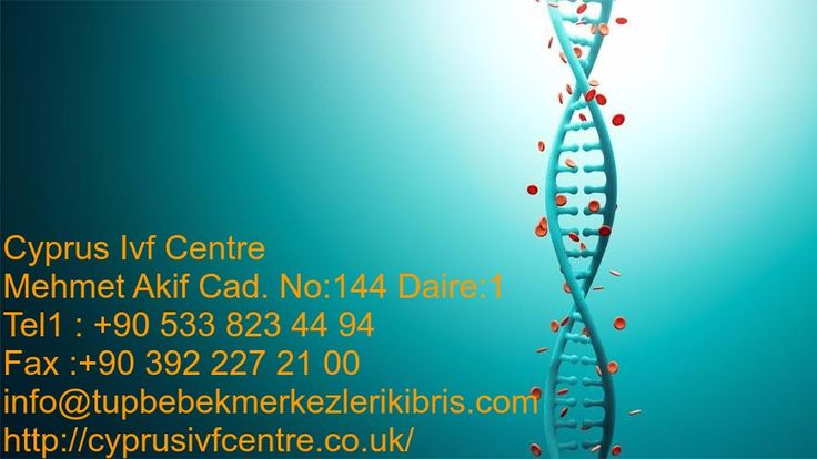 Are you facing infertility problems and want to be a parent? Well, it is as simple as visiting the #CyprusIVFcentre. You will be helped to understand the IVF procedure so you can decide if it is what you need. Visit us: http://cyprusivfcentre.co.uk/