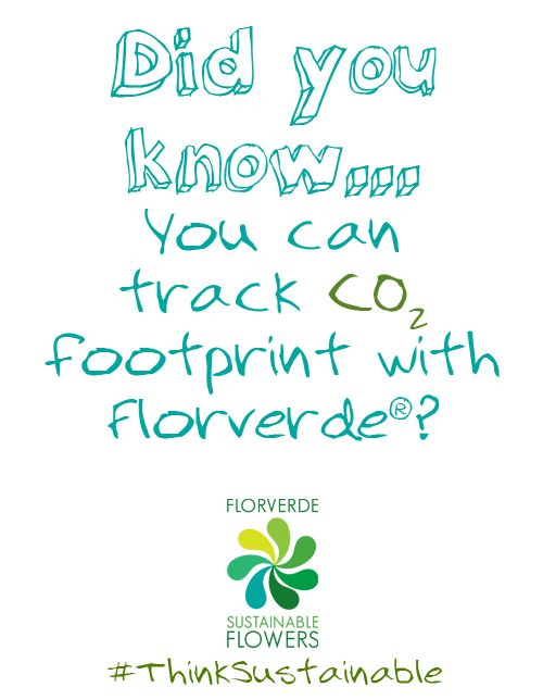 Did you know that Florverde® certified companies track CO2 emissions from their flower production and exports to low their carbon footprint?