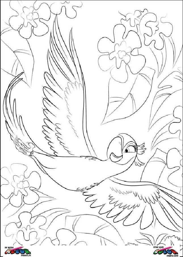 Rio Coloring pages