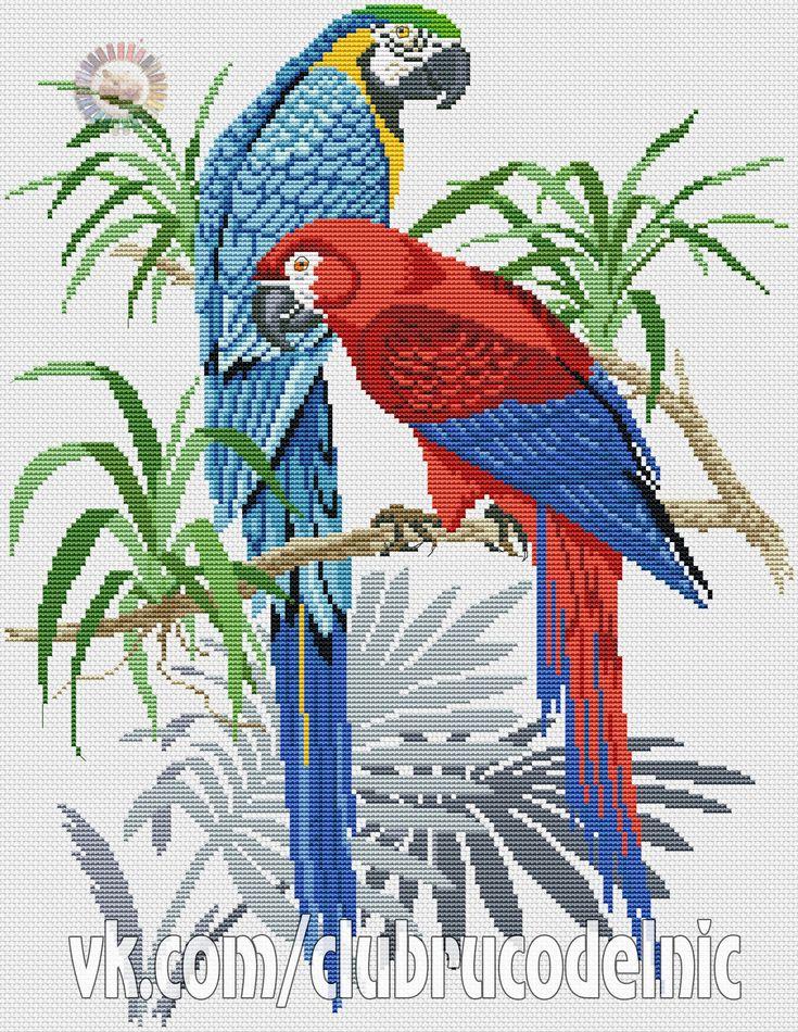 Ms de 25 ideas increbles sobre Aves grandes en Pinterest  Doble