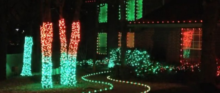 a still shot from another display programmed by synchronized christmas each of the four main tree trunks were animated using 4 colors of lights