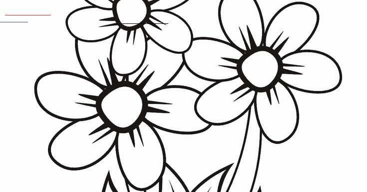 Terkeren 19 Foto Gambar Bunga Tanaman Bunga Merupakan Salah Satu Makhluk Hidup Yang Memiliki Rupa Yang Cantik Dan Sebagian Besar Memiliki Wallpaper Art Color
