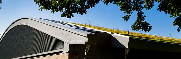 The curved light-weight roof supports a heavy green roof. Image by Hurlingham Club, London