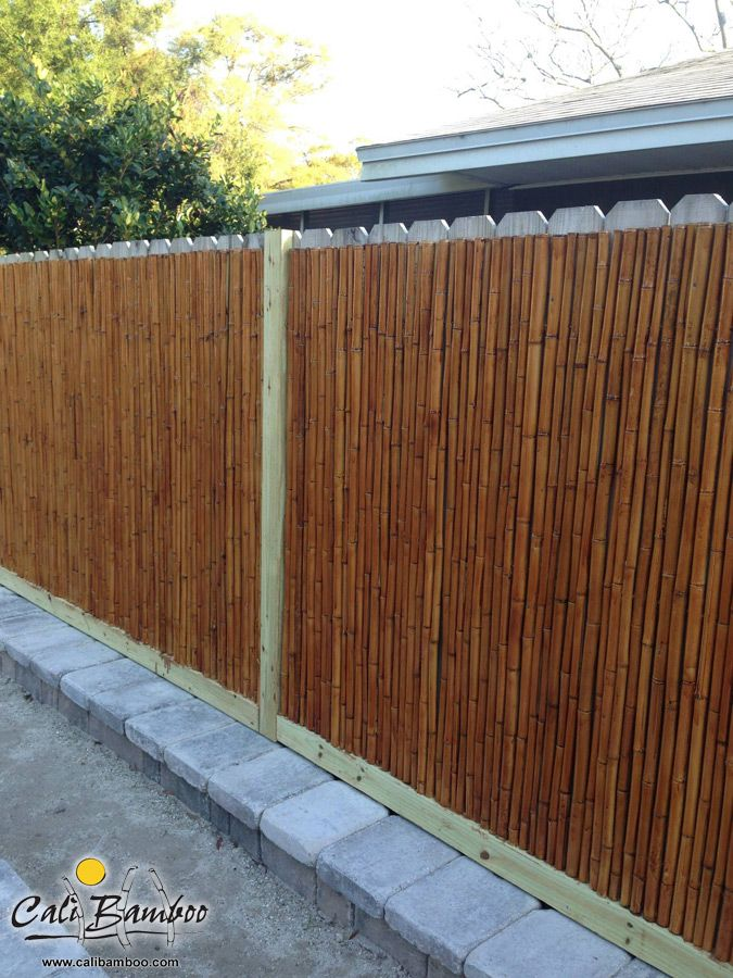 diy backyard project bamboo fencing bamboo fencing