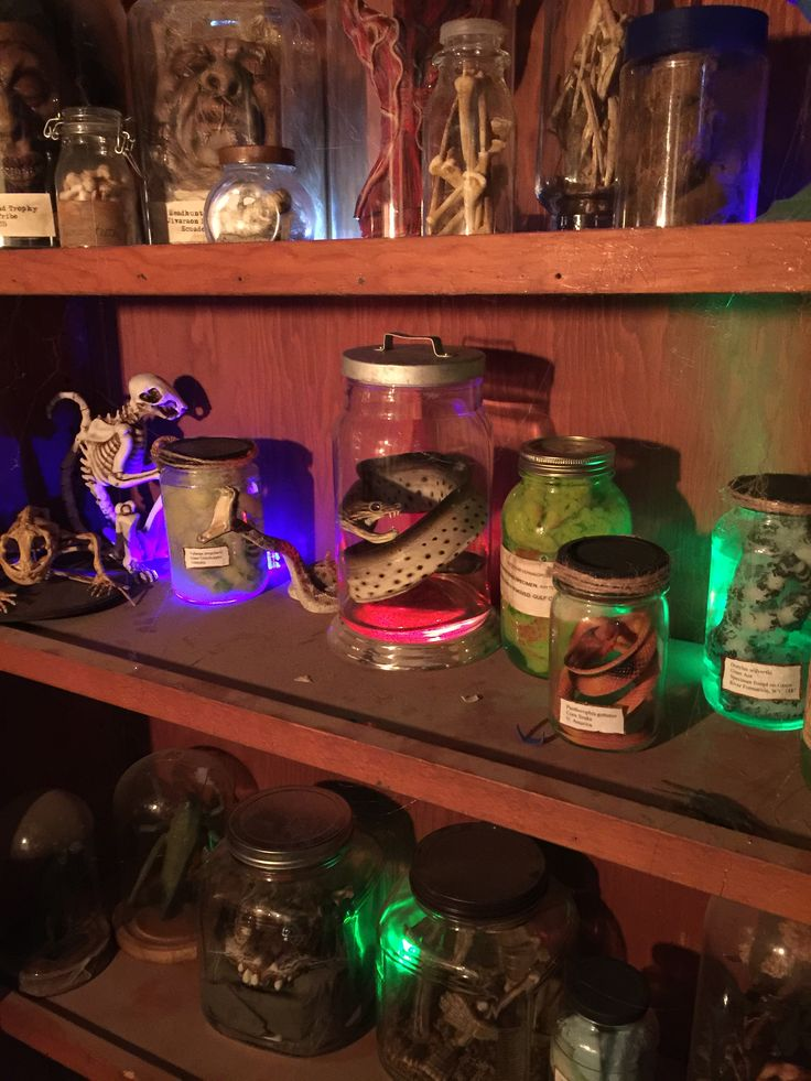 Halloween 2015 specimens & oddities (HF member punkineater)