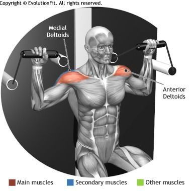 SHOULDERS -  SHOULDER PRESS CABLE MACHINE