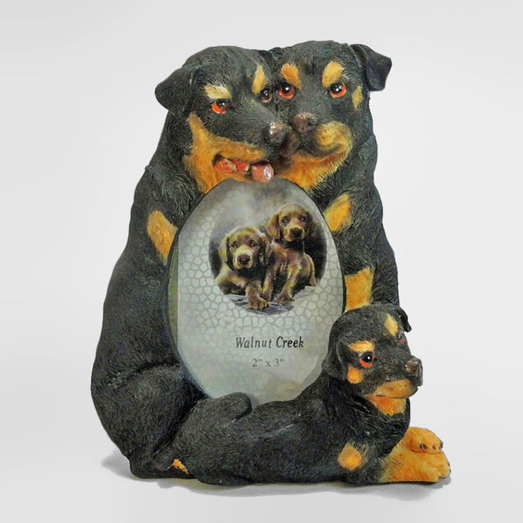 Rottweiler Dogs and Puppy Figurines Small Polyresin Picture Photo Frame - PFD713S - Rottweiler dogs and puppy small polyresin dog figurines table or desk photo frame with easel back. Holds one 2 x 3 picture. Perfect for small places where space is an issue such as an office cubicle or bedside table - FOR SALE at www.ClaudiasBargains.com