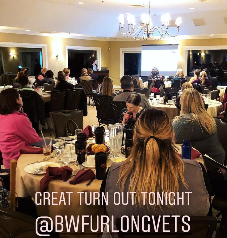 We were proud to support our friends at @bwfurlongvets this past weekend at their annual Healthy Horse Seminar! Great turnout informative lectures and an awesome time seeing new and old friends. #BWFhealthyhorse2018    #pulsevet #versatron #propulse #shockwavetherapy #eswt #equinevet #dvm #veterinarian #veterinarytechnician #veterinarymedicine #equinesportsmedicine #vetlife #veterinarytechnology #aaep #aaevt  #iselp #equinelameness