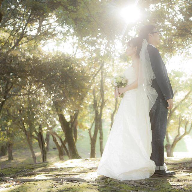 ⋆* 2/17は12時~13時半のご案内が可能になりました✨  現在order dressは3ヶ月待ちとなっております。  年内に海外・国内ウエディングをお考えのお客様は、早めのご来店をお勧め致します。 会場選びからサポートさせて頂いておりますので、気軽にお問合せくださいませ✨  #les_Meの花嫁 #オーダードレス #wedding #weddingdress #結婚式 #ウエディングドレス #海外ウエディング #ブライダル #結婚式 #オリジナルドレス #ウエディング #鹿児島 #les_me #lesme #プレ花嫁 #結婚式準備 #前撮り #ロケーションフォト #ウエディングフォト #kagoshima #locationPhoto #アクセサリー #ヘッドアクセサリー #ビジュー #Kagoshima #オリジナルウエディング #ヘアメイク #hairmake #編み込み #ヘアスタイル #bouquet