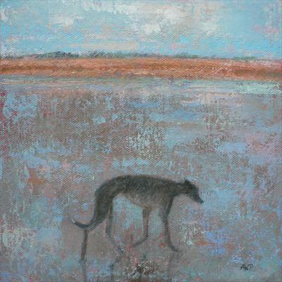 Greyhound On Sand