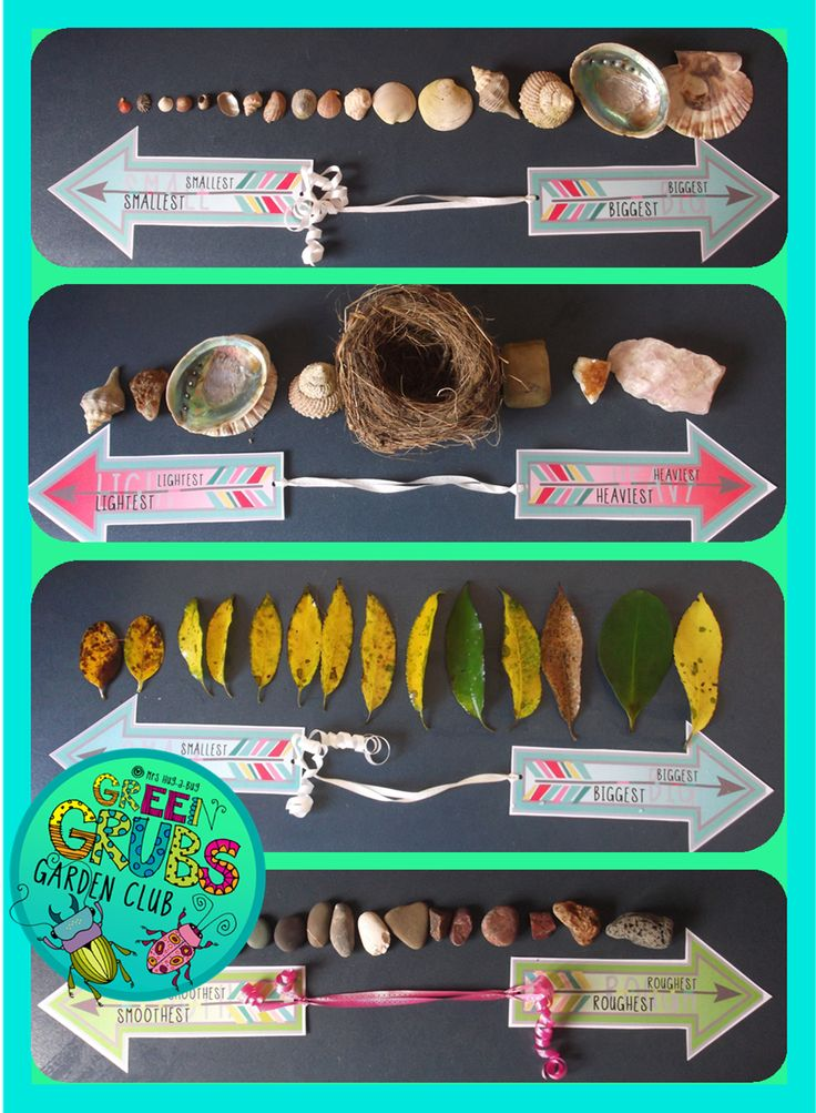 Bring some active learning to your nature table by incorporating the skills of comparing, ranking and ordering! This pack contains a variety of sorting/continuum arrows that the children can use to organise and arrange the natural materials on your classroom nature table...
