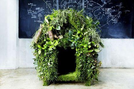 Makoto Azuma è il proprietario del negozio di fiori Jardins des Fleurs ed è anche un'artista che crea opere d'arte fatte di fiori e piante, esplorando la ...