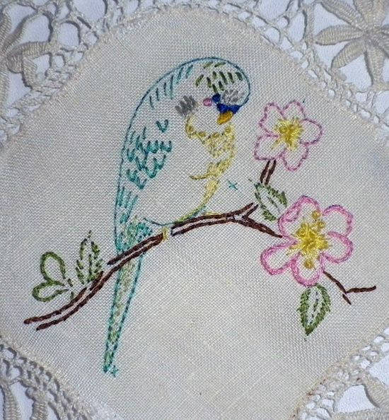 Budgie embroidered on lace doily: English Budgies, Budgies Parakeet, Budgies Embroidered