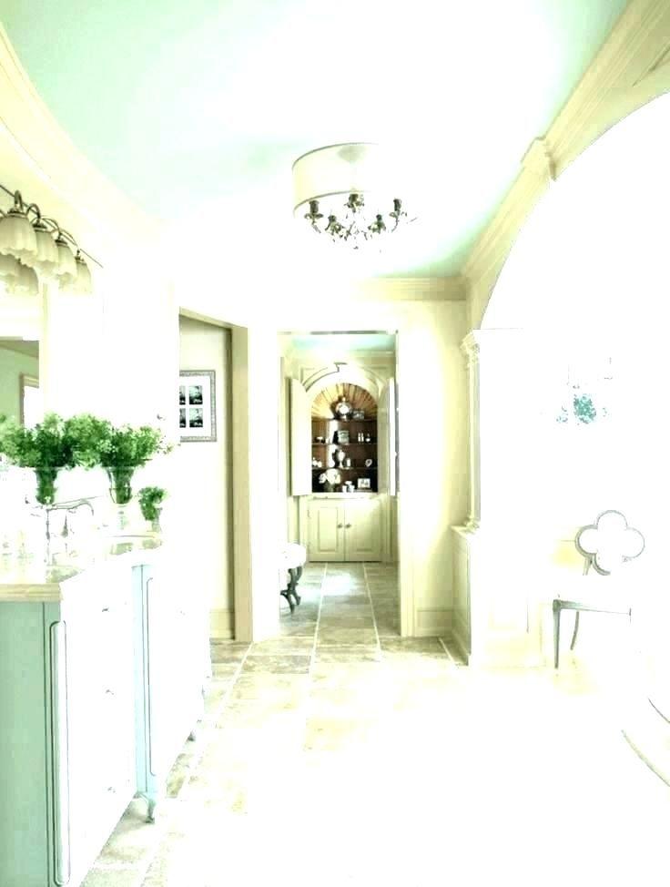 Bathroom Ceiling Paint Color Ideas in 2020 | Ceiling paint ...