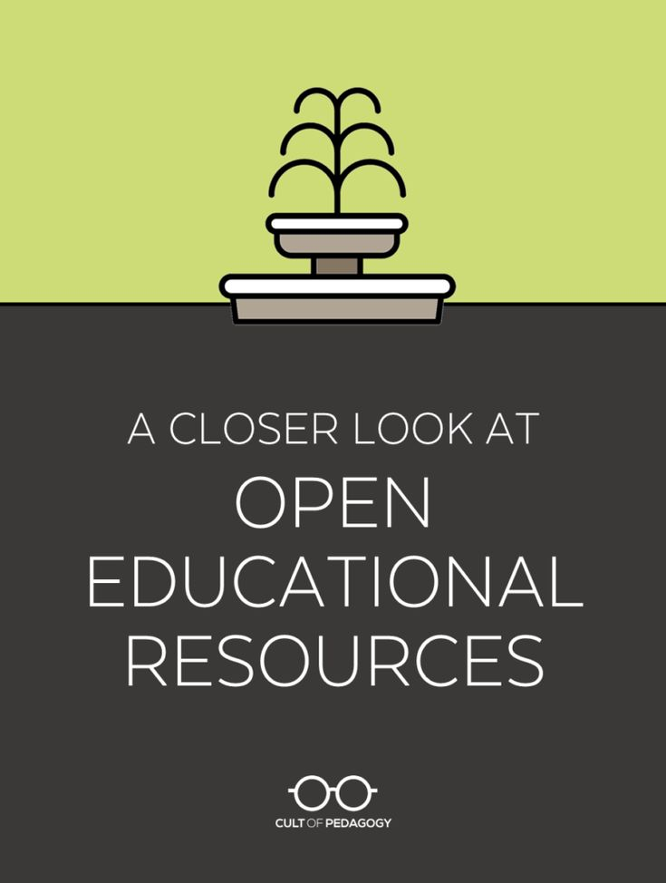 A Closer Look at Open Educational Resources