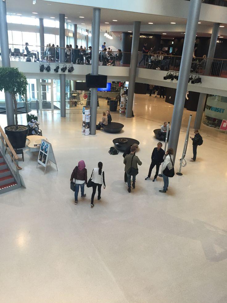 Steno Terrazzo – Gör entré på Malmö Högskola!