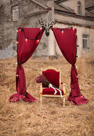 Свадебная фотосессия в сочных оттенках марсала, свадебная арка с оленьими рогами и кресло
