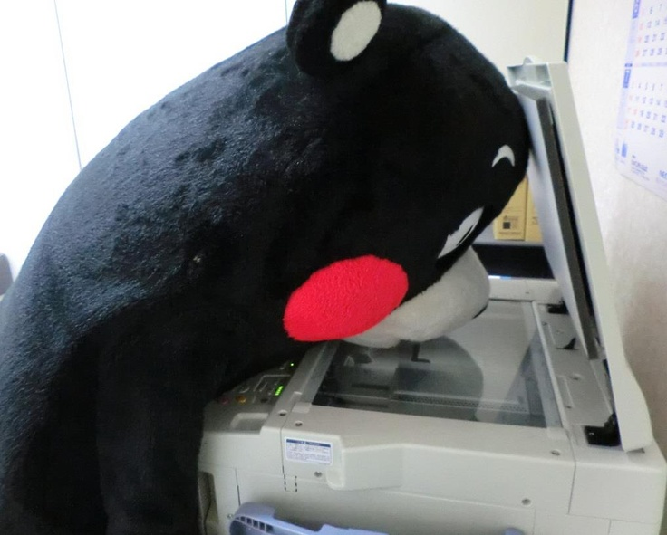 Kumamon, making a copy.