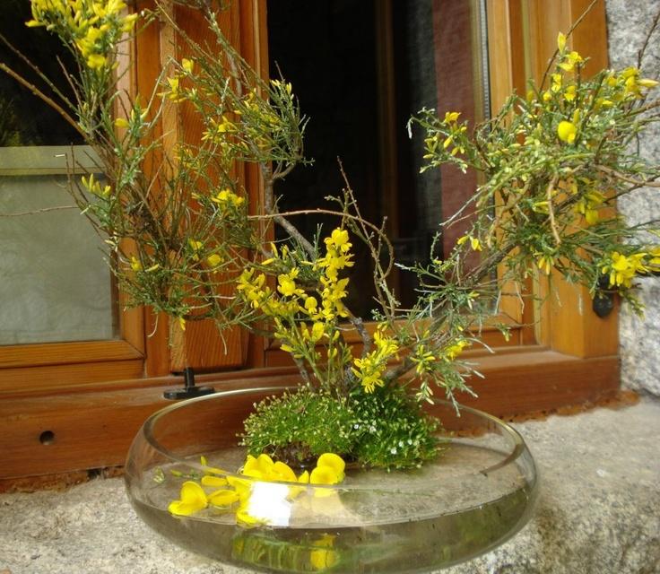 Decoración con Piorno en Flor