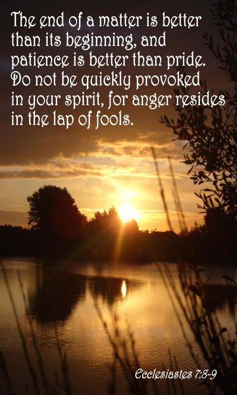 Do not be quickly provoked in your spirit,for anger resides in the lap of fools. Ecclesiastes 7:9