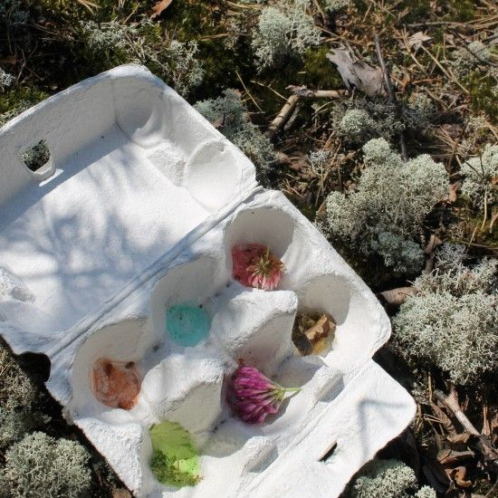 Järjestä luontobingo lähimetsään. Tarvitset vain värikynät ja munakennoja. Luontobingossakerätään munakennoihin erivärisiäasioita luonnosta. Järjestä bingo eri vuodenaikoina, yllätyt miten paljon eri värejä löytyy talvellakin.