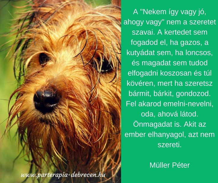 szeretet, Müller Péter, párkapcsolat