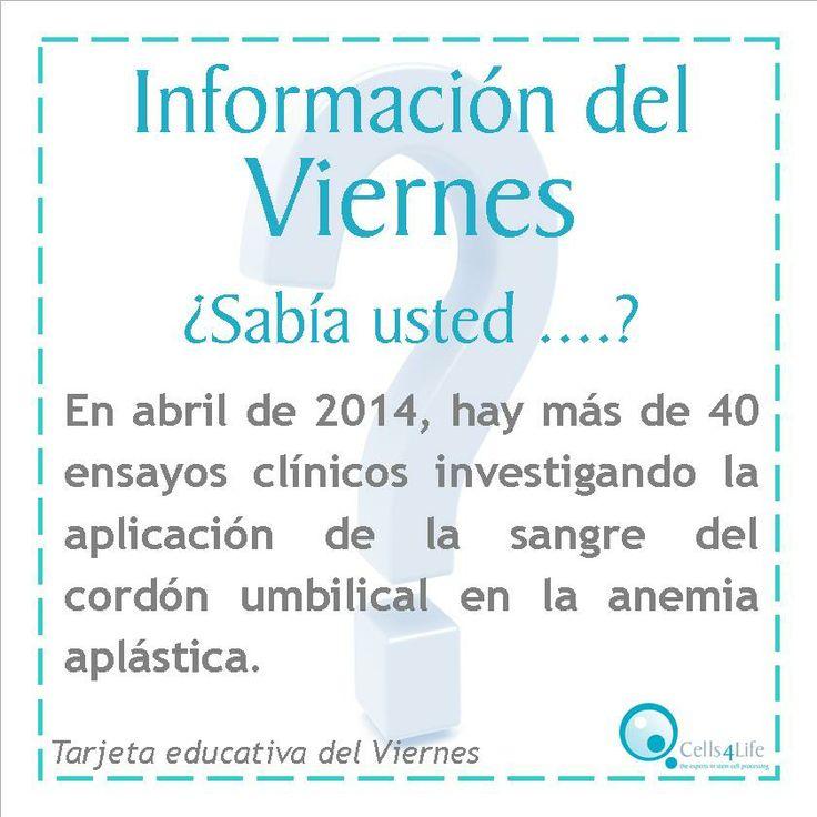 En abril de 2014, hay más de 40 ensayos clínicos investigando la aplicación de la sangre del cordón umbilical en la anemia aplástica.