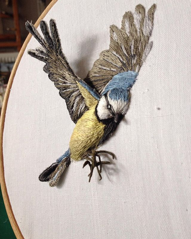 Birds with wings, whatever next! Happy Sunday #fauxtaxidermy #embroidery…