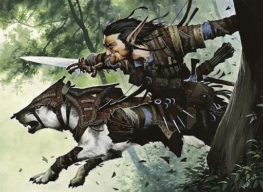 Call of the Wild: A Druid Handbook