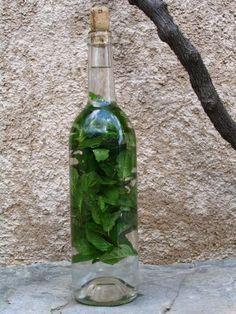 LIQUEUR MENTHE (ou romarin, sariette, thym...)     -      Introduisez  bouquets   menthe par le goulot,     - Verse  à ras du goulot de l'eau de vie à 90°,  . - Mettre un bouchon en liège    -    Abandonner l bouteille 2 mois  - Ensuite faire sirop avec 1 l eau source et 500 gr sucre canne   -      Passez l'alcool passoire et ajoutez sirop refroidit  -  Filtre le tout filtre en papier - Met bouteille - Stock abrit lumière sinon perd couleur vert -