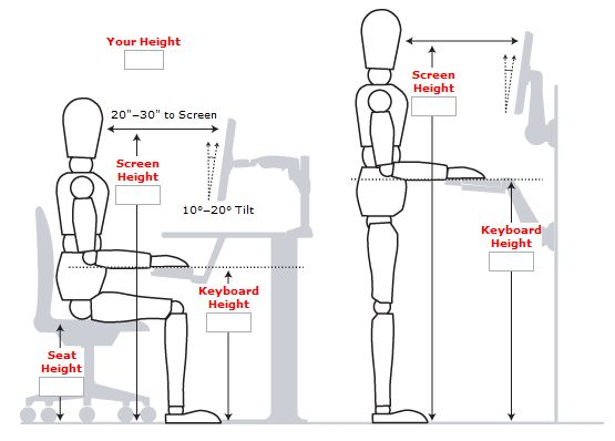 Standing Desk Measurements - very good article with this that tells how to change your desk to a standing one. Click and read:)