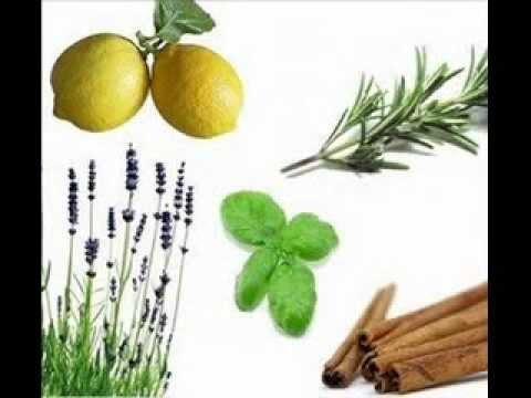 metabolismo de las purinas y acido urico hierbas para gota acido urico ataque de gota con acido urico normal