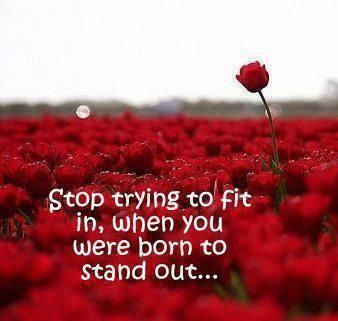 Stand out ... instead of trying to fit in! YOU CAN MAKE A DIFFERENCE! http://katfriant.nerium.com www.neriumbiotech.com