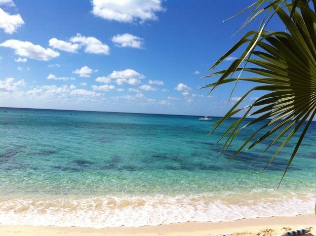 ISLAS CAIMAN: Nuestra Semana en Diciembre en Gran Caimán -Diarios de Viajes de Caribe- Miculi - LosViajeros
