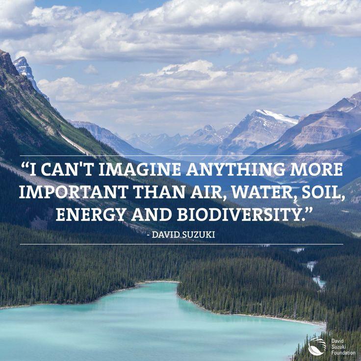 David Suzuki thinks awesomely