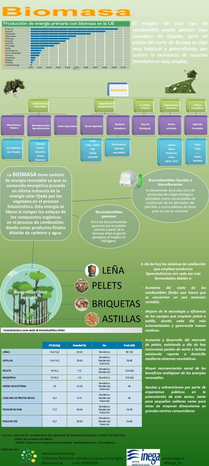 El mercado de la biomasa. Infografia.
