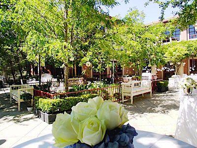 Osher Marin Jewish Community Center In San Rafael Ca California Wedding Venuesjewish