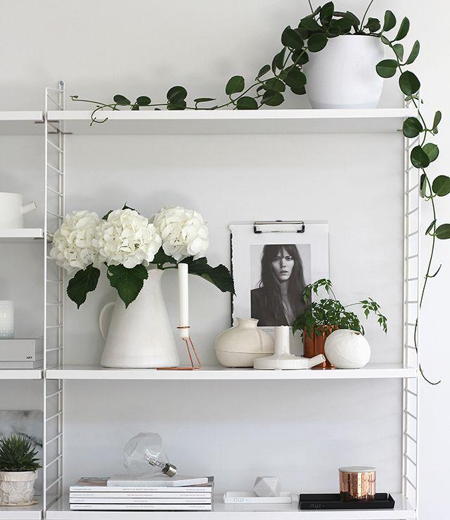 shelf details / resident gp / the design chaser