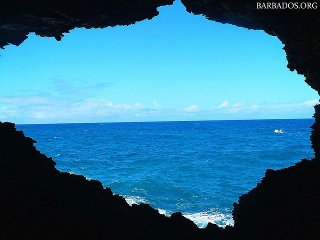 Looking out from the Animal Flower Cave in #Barbados