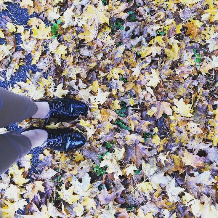 Autumn in Stuttgart...  #Stuttgart #Stuggi #0711 #autumn2016 #leaves #orange #yellow #ochre #gold #changeofseason