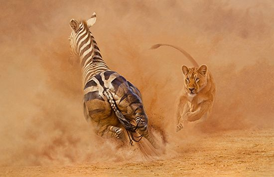 zebra panic by Peter Stewart Oil ~ - x -