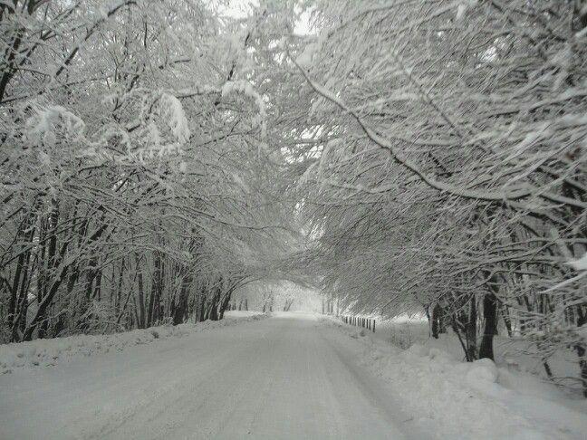 Winter in Romania! 2014