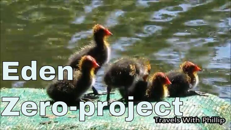 Eden, Zero project music