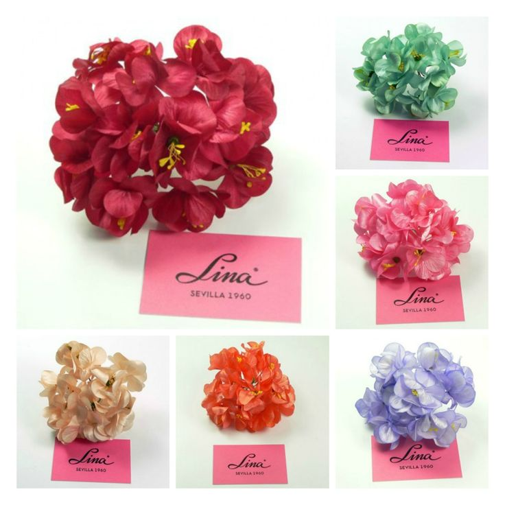 48 Mejores Im Genes Sobre Flores De Flamenca En Pinterest