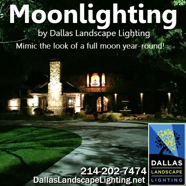 17 Best Images About Outdoor Lighting By Dallas Landscape