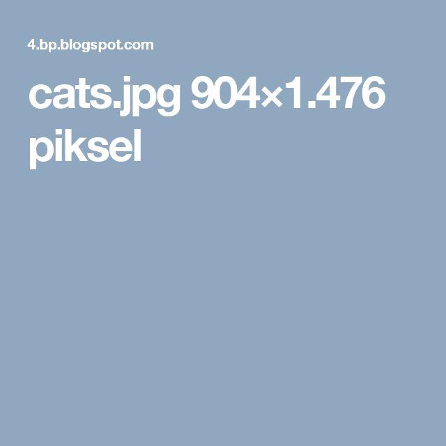 cats.jpg 904×1.476 piksel
